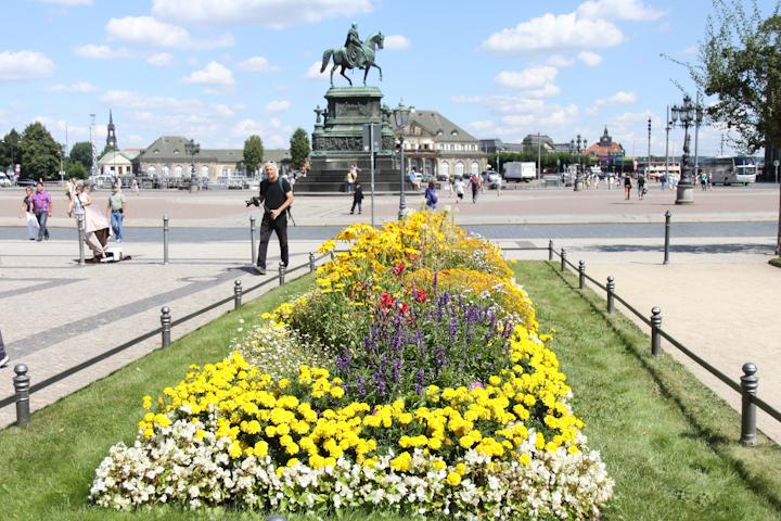 Dresdon-flowers-1-of-1