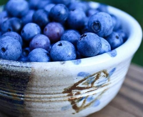 Healthy Snack Ideas blueberry