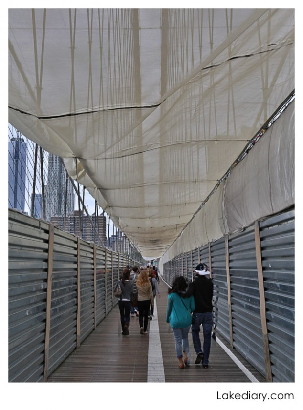 scaffolding The Brooklyn Bridge