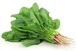 Healthy Food Shopping List English Spinach