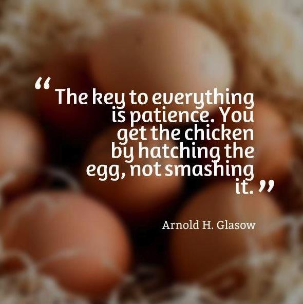 the-key-to-everything-is-patience-you-get-the-chicken-by-hatching-the-egg-not-by-smashing-it-quote-1