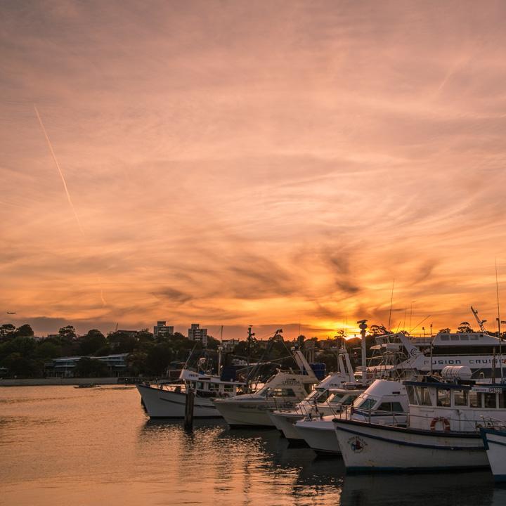 anzac bridge and sunset 1