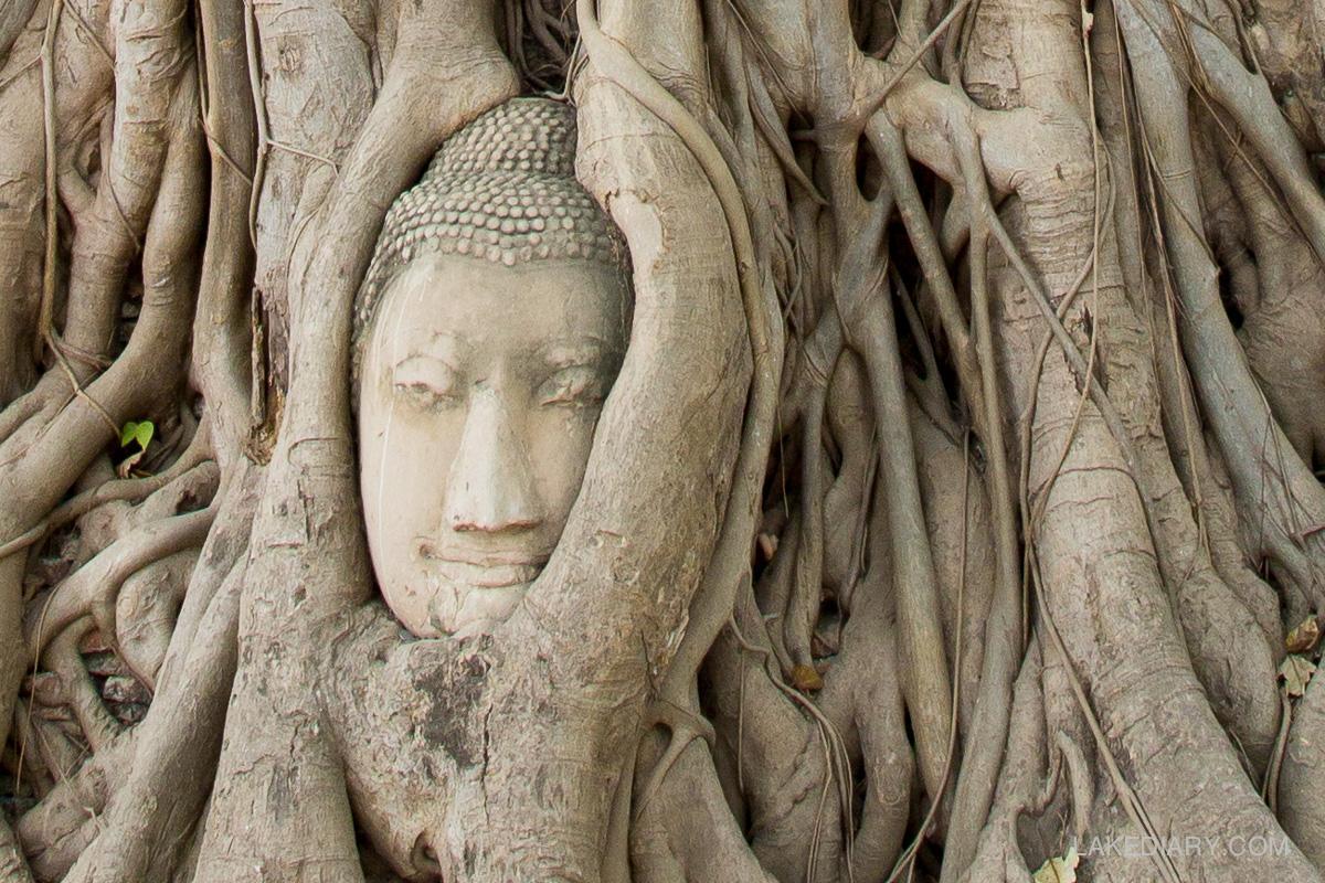 Ayutthaya thailand-3