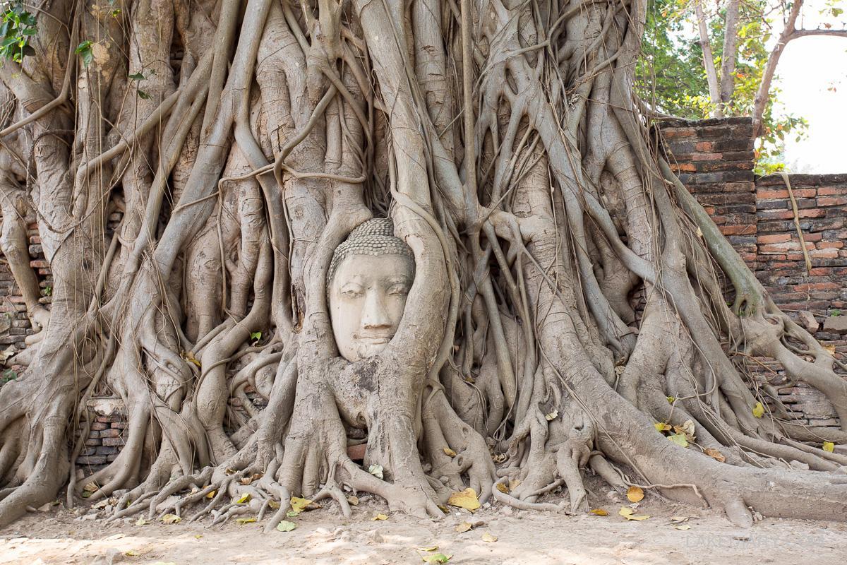 Ayutthaya thailand-4
