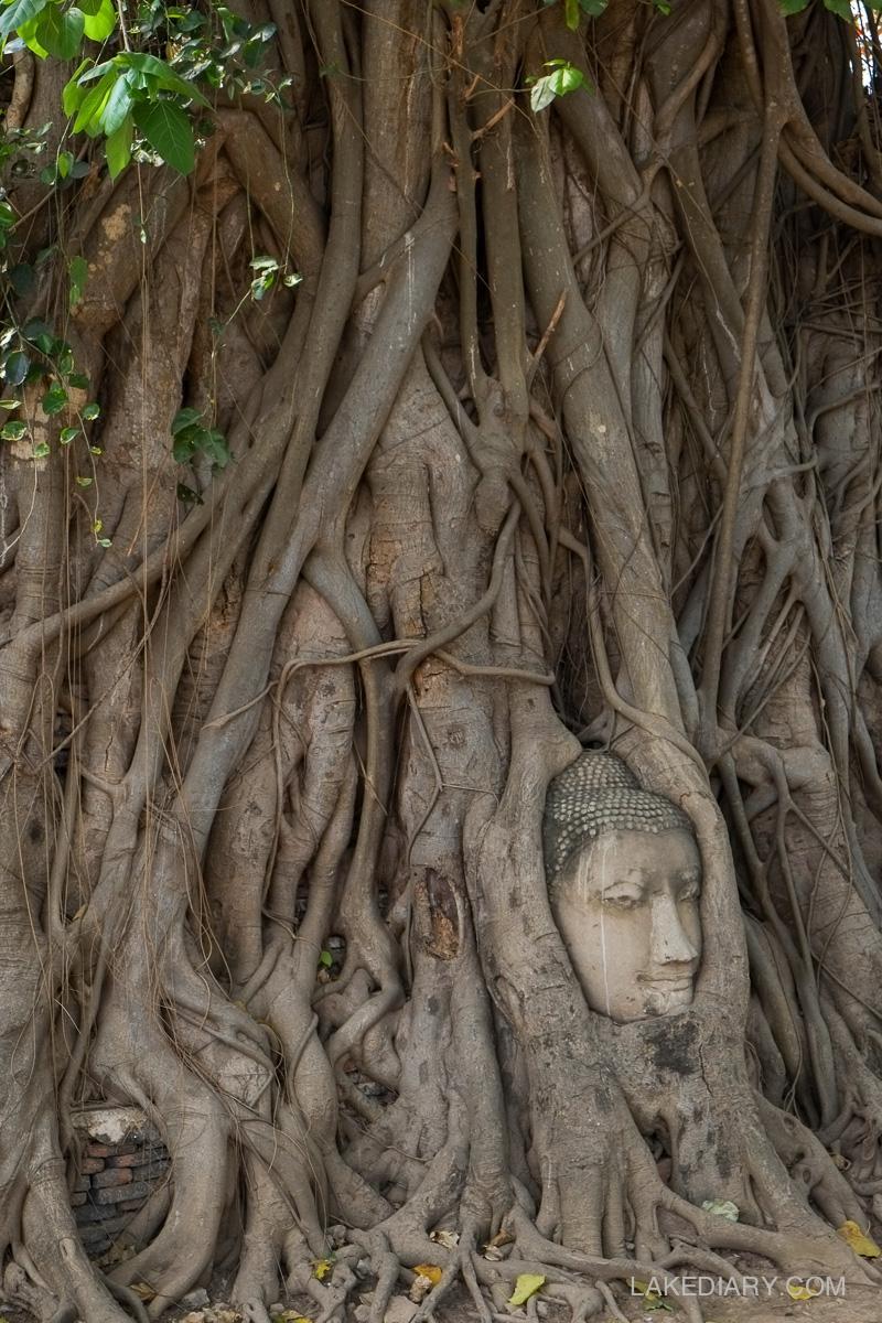 Ayutthaya thailand-6