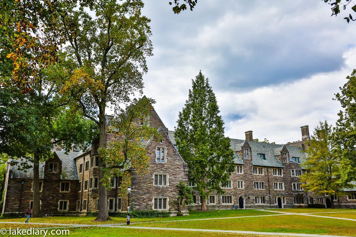princeton-university-11