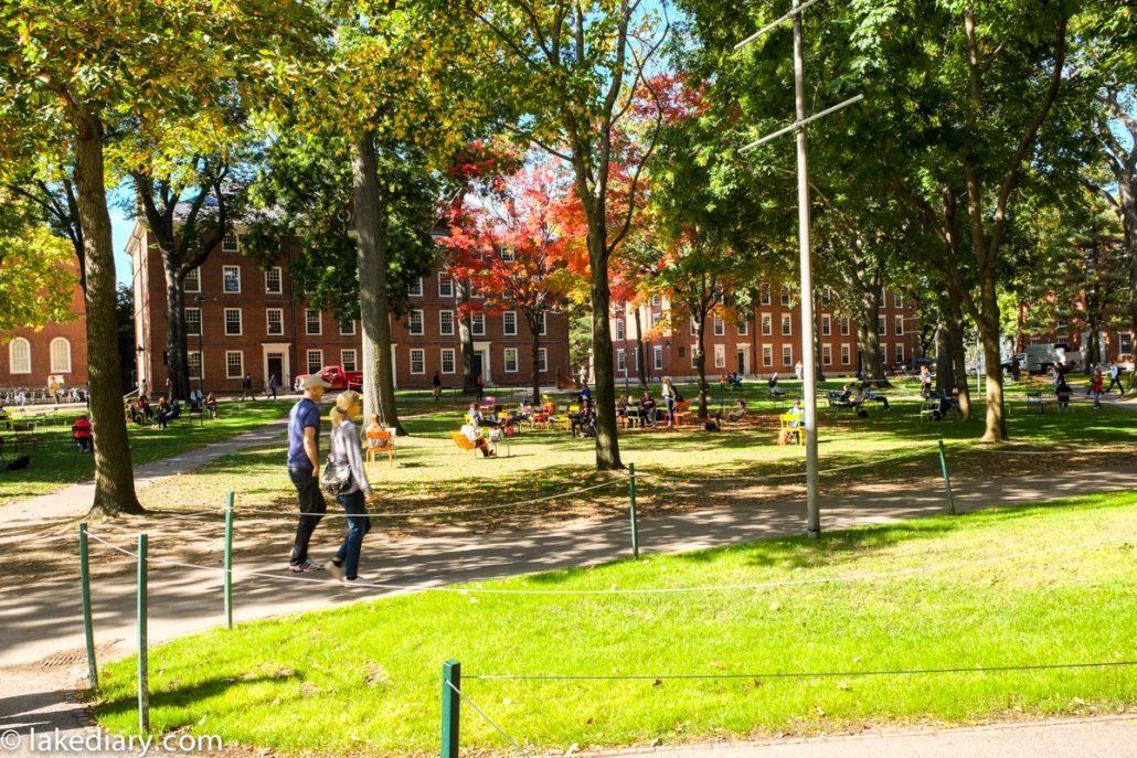 harvard-university-4