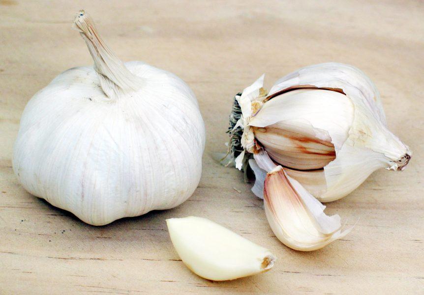 Garlic healthy food