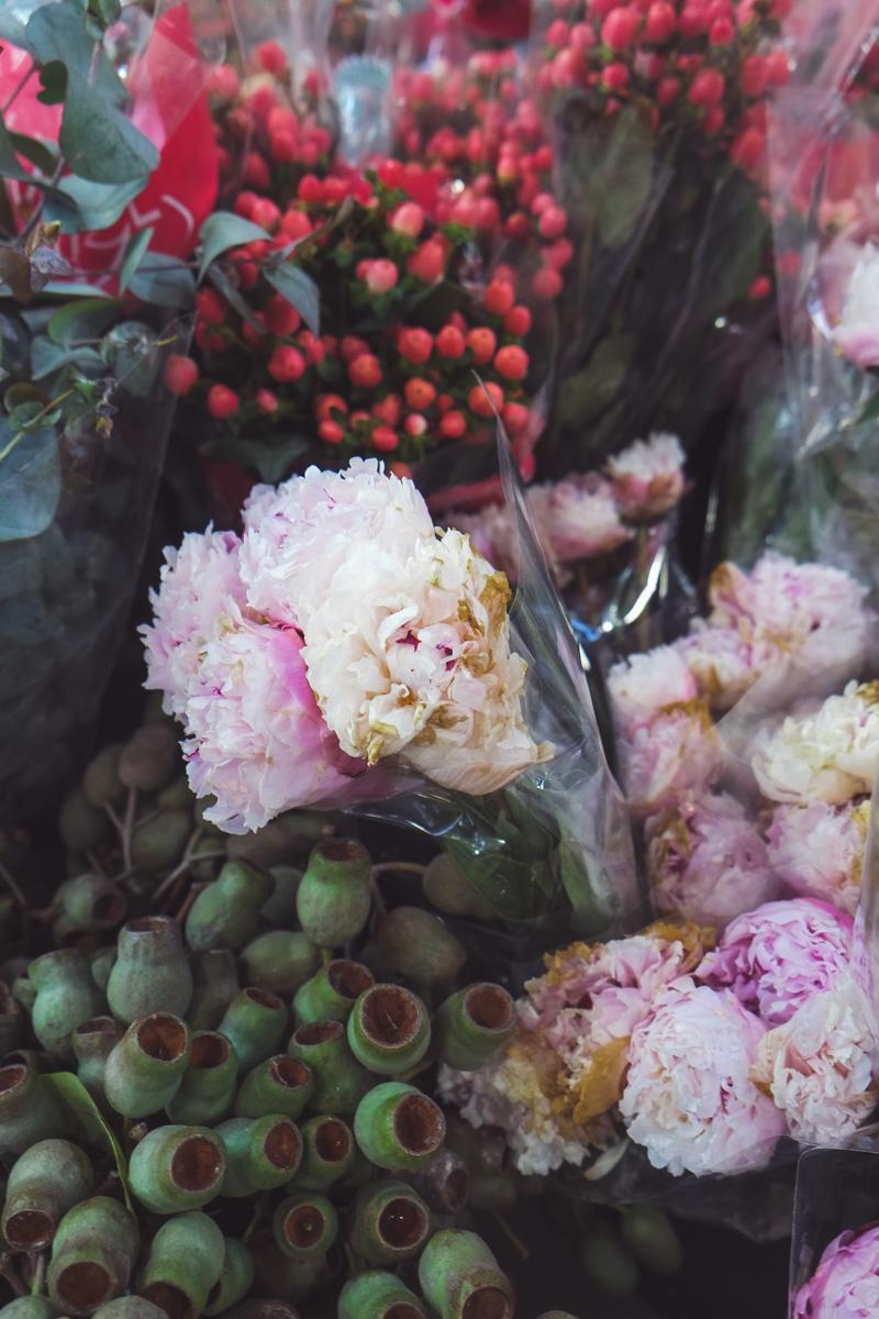 sydney flower market-3