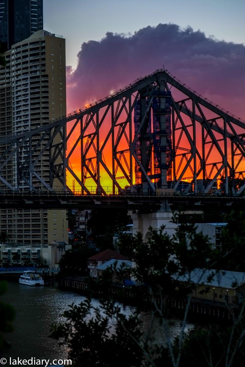 Brisbane Day Trip-5