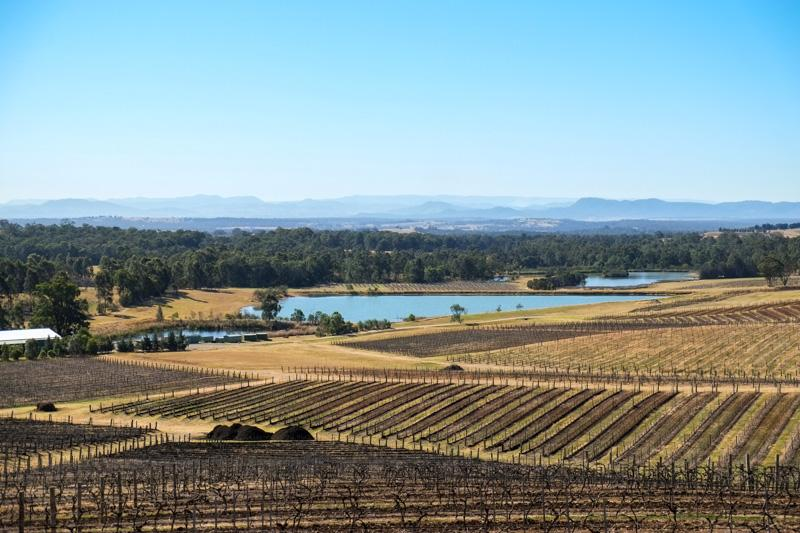 Hunter Valley in Winter