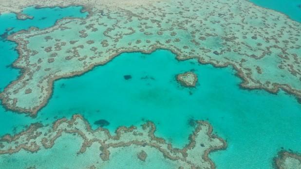 The heart reef great barrier reef